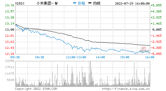 <strong>手机+IoT</strong>